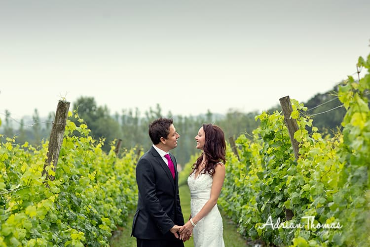 Llanerch Vineyard photograph with bride and groom