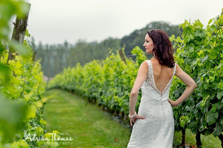 beautiful bride at llanerch
