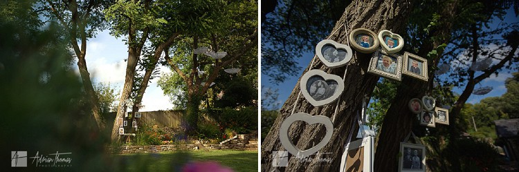 Framed imaes hanging on Family tree.